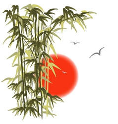 Bamboo on sunset background vector