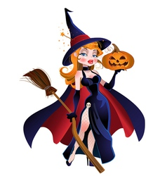 Beautiful witch in cloak with a pumpkin vector