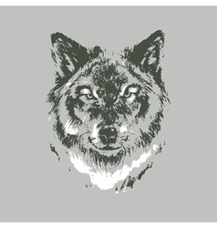 Hand drawn wolf sketch vector