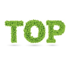 Top text of green leaves vector