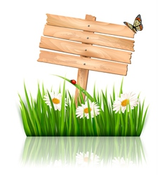 Nature background with green grass and flowers and vector