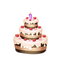 Cake with chocolate and cream burning candle vector