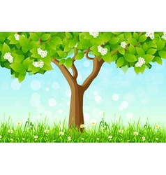 Green tree in the grass vector