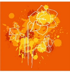 Narcissus background vector