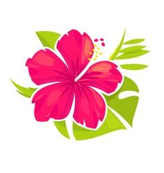 Hibiscus flower blossom vector