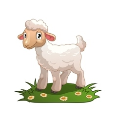 Little cartoon white lamb vector