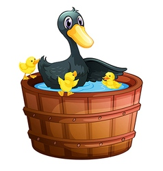 Ducks taking a bath vector