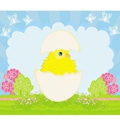 Cute easter chicken in egg shell vector