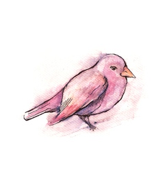 Hand drawn pink bird watercolor style vector