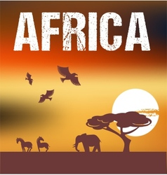 Africa - infographics and background vector