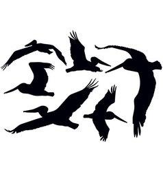 Flying pelicans vector