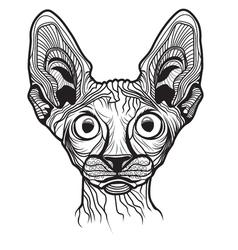 Cat head animal vector