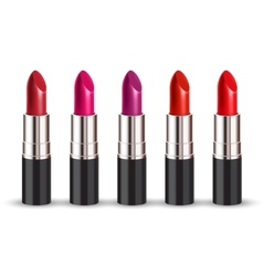 Lipstick set vector