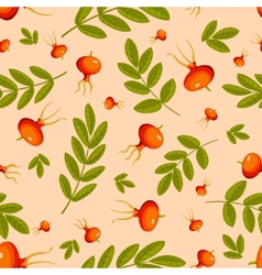 Rose hip seamless vector