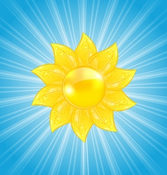 Abstract background with sun and light rays vector