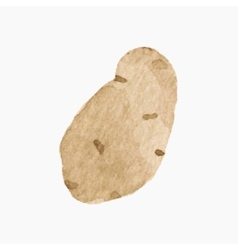 Hand-drawn potato real watercolor drawing vector