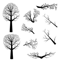 Bare trees silhouette vector