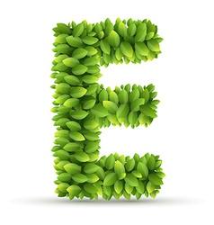 Letter e alphabet of green leaves vector