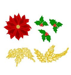 Christmas decoration poinsettia holly and gold lea vector