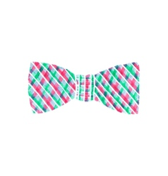 Butterfly tie watercolor knot tie on the white vector