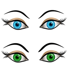 Blue and green female eyes vector