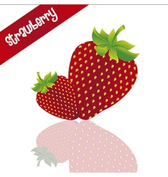 Two strawberries isolated on white background with vector