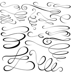 Calligraph elements vector