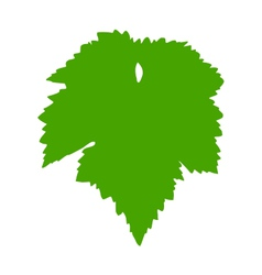 Vine leaf vector