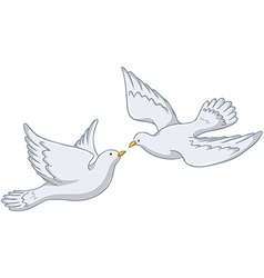 White pigeons flying together vector