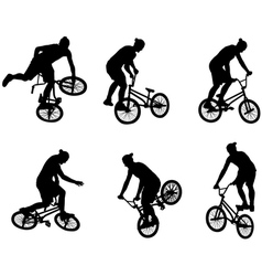 Stunt bicyclists vector