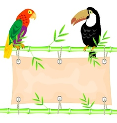 Poster and tropical birds vector