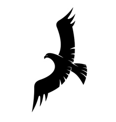 Black eagle flying with spread wings vector