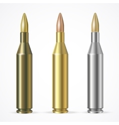 Rifle bullet set vector