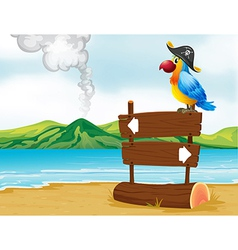 A parrot with a pirate hat above the wooden vector