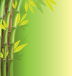Green bamboo on green background vector