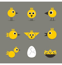 Yellow baby bird vector