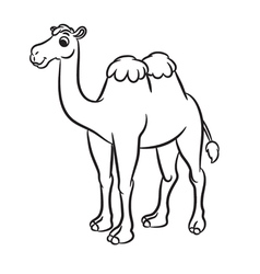 Cartoon of cute camel outlined vector