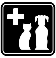 Veterinary care isolated icon vector