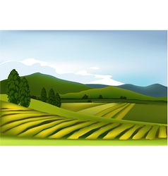 Mountain landscape vector