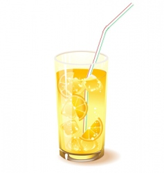 Fruit drink vector