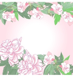 Background with two pink peonies and flowers vector