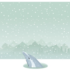 Dolphin from ice-hole vector
