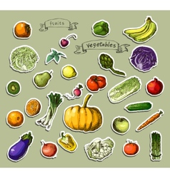 Hand-painted vegetables fruits vector