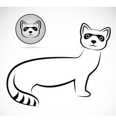 Raccoons vector