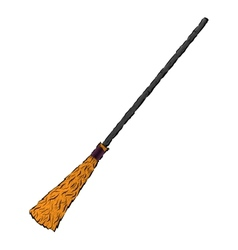 Witchs broom stick vector