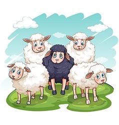 Five sheeps vector