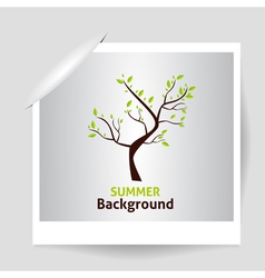Summer photo frame green tree vector