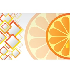 Juicy orange background vector