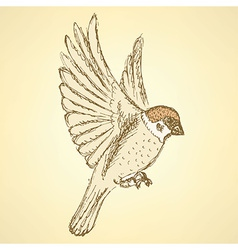 Sketch cute sparrow vector