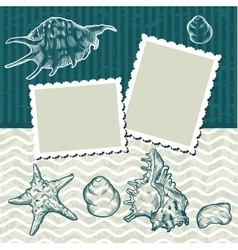 Vintage seashells postcard vector